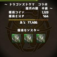 DDQ中級