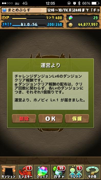 IMG_8447